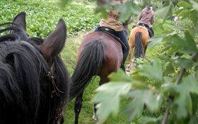 Zu Pferd unterwegs, Pulheim