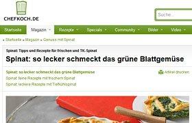 User-generated content, Beispiel Chefkoch