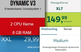 Webhosting-Pakete, Webserver-Pakete, Managed Server