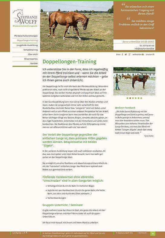 Pferdeverhaltenstherapie 2