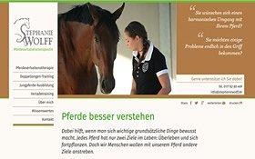 Webdesign aus Köln für Pferdeverhaltenstherapeutin
