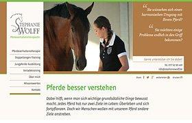 Marketing Selbständigkeit Pferdeverhaltenstherapie